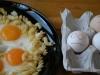 scared_eggs_018