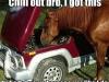 horsepower_043